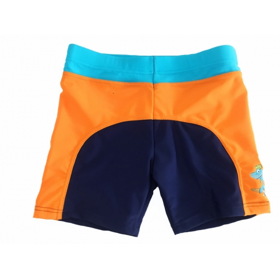 Little Boys Swim Trunks
